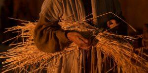 Vapahtaja opetti vertauksia vehnästä ja rikkaviljasta