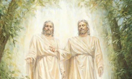 Ovatko Isä ja Poika yhtä olemuksessaan vai tarkoituksessaan?