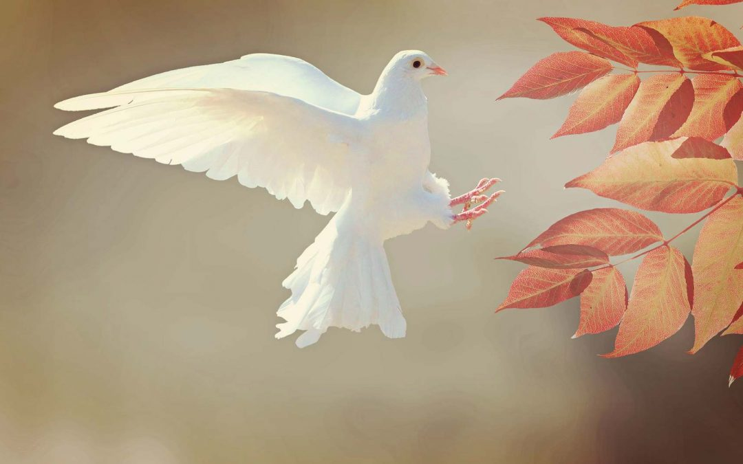 Nöyryyden merkitys Pyhän Hengen tuntemisessa
