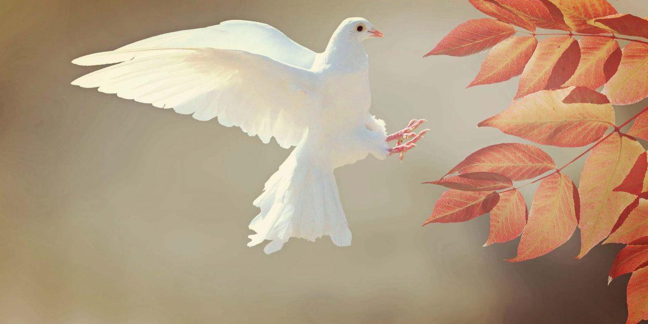 3 Pyhän Hengen tehtävää, joita et ehkä tiedä