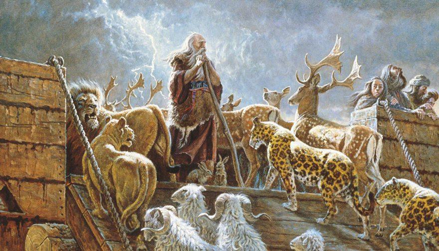 5 kysymystä Nooasta ja tulvasta – ja vastaukset niihin