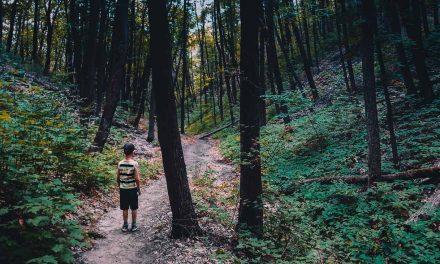 Mitä lapset voivat opettaa meille pelkojen kohtaamisesta